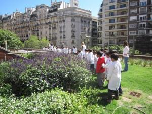 Escuelas verdesI